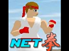 NETFIGHTER
